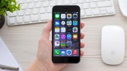 কিভাবে সবার আগে ডাউনলোড করে নেবেন নতুন iOS ভার্সান?